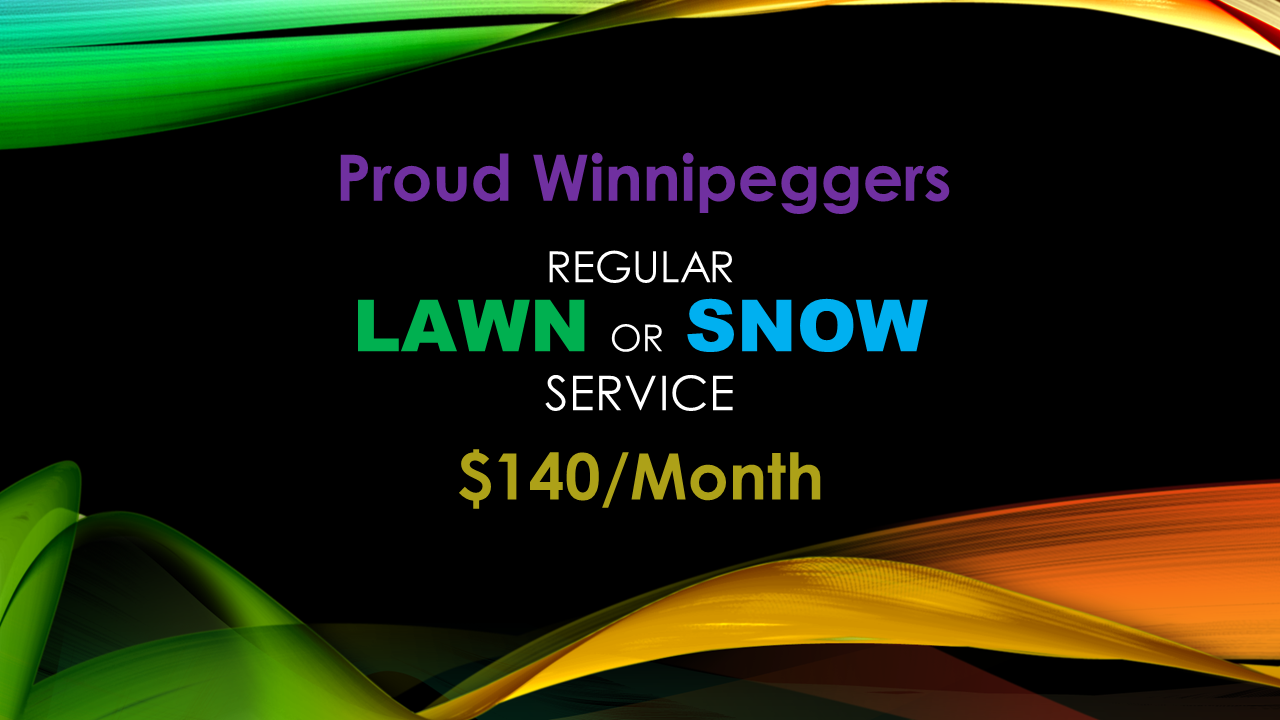 lawn and snow $140 per month